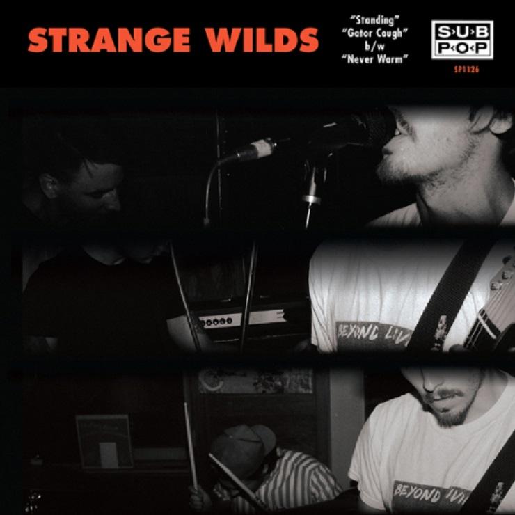 Strange Wilds 'Standing' (EP stream)