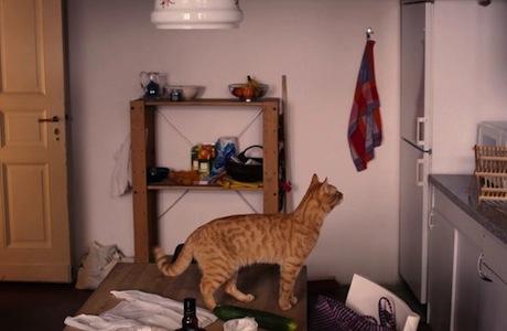 The Strange Little Cat Ramon Zürcher