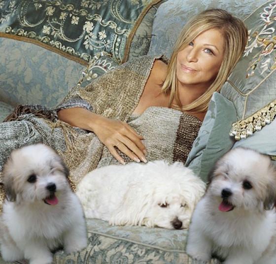 Barbra Streisand Made Clones of Her Dead Dog