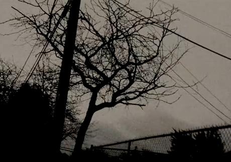 "Sun Kil Moon ""Black Kite"" (video)"