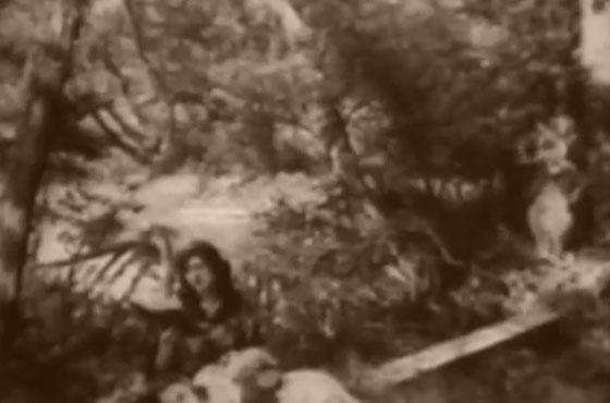 """Sunny Pompeii """"Classic"""" (video)"""