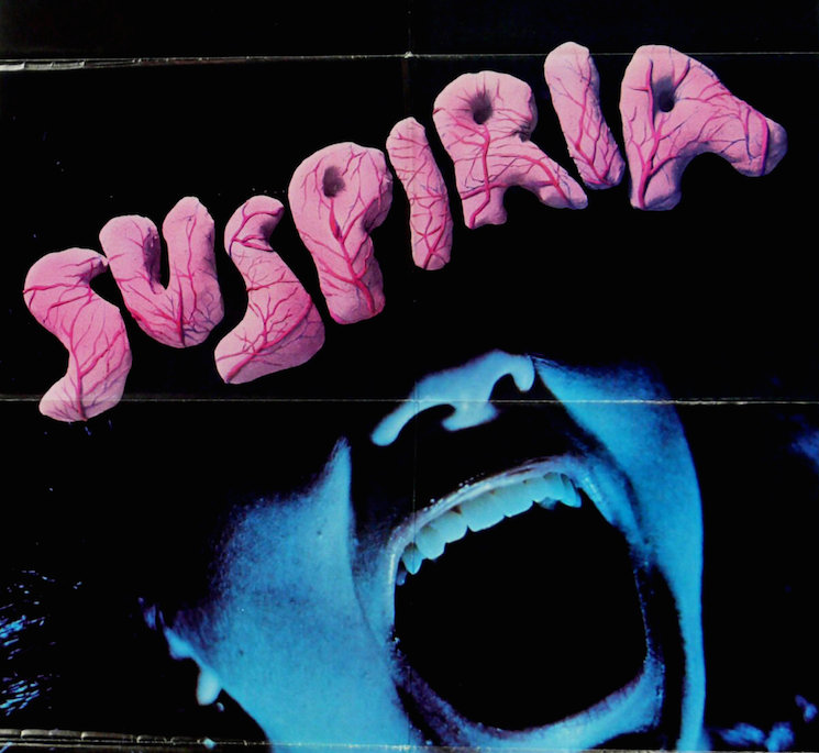 'Suspiria' Remake Reportedly Stars Dakota Johnson and Tilda Swinton