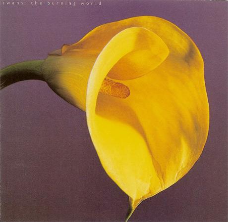 Swans Treat 'The Burning World' to Vinyl Reissue