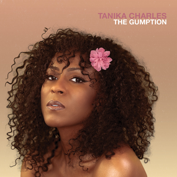 Tanika Charles Returns with 'The Gumption,' Shares New Song