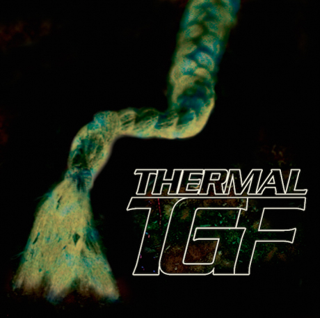 Teengirl Fantasy Thermal EP
