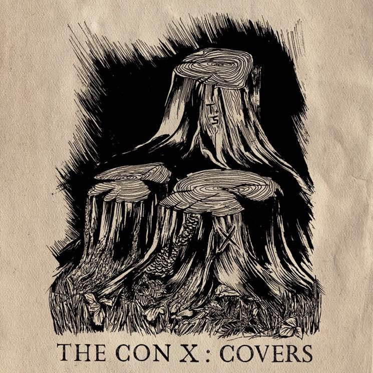 Tegan and Sara 'The Con X: Covers' (album stream)