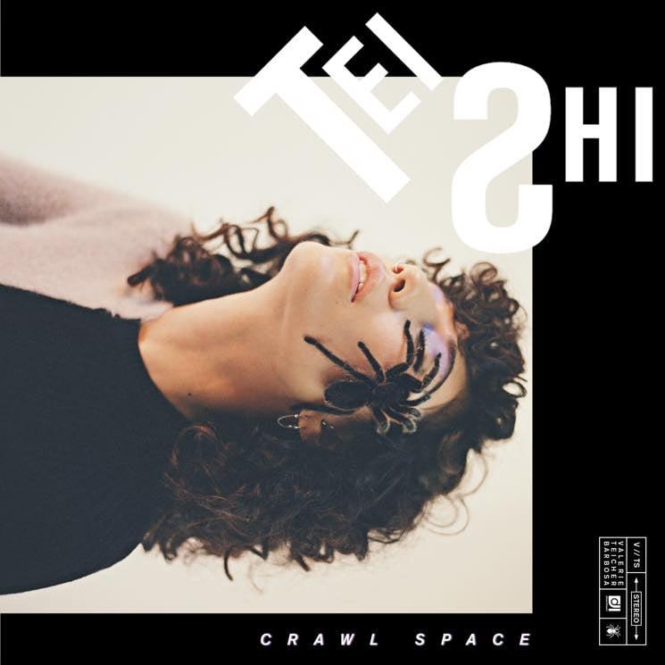 Tei Shi Crawl Space