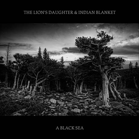 The Lion's Daughter & Indian Blanket <i>A Black Sea</i>