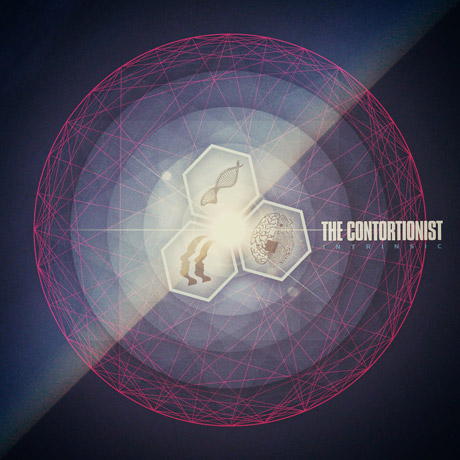 The Contortionist Intrinsic