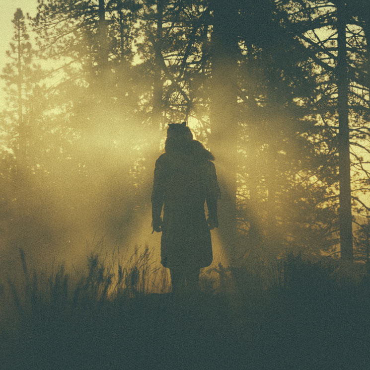 Thundercat 'The Beyond / Where the Giants Roam' (EP stream)