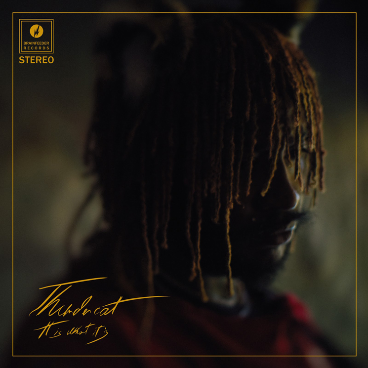 "Thundercat Gets Ty Dolla $ign and Lil B for ""Fair Chance"""