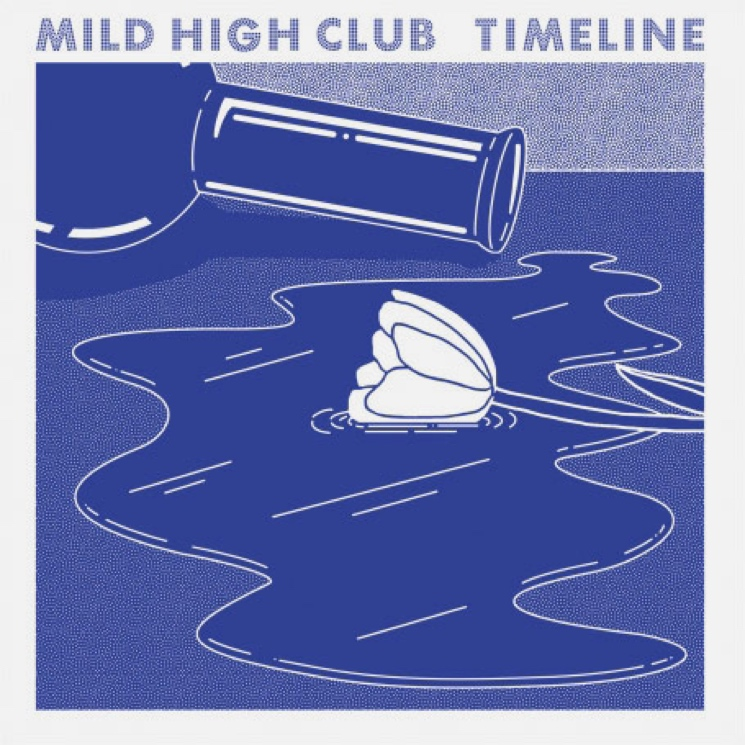 Mild High Club 'The Chat' (ft. Ariel Pink & Weyes Blood)