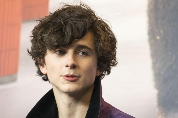 ​Timothée Chalamet to Play Bob Dylan in 'Going Electric' Biopic