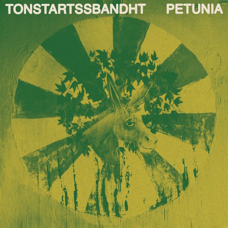 Tonstartssbandht Detail New Album 'Petunia,' Share 'What Has Happened' Video