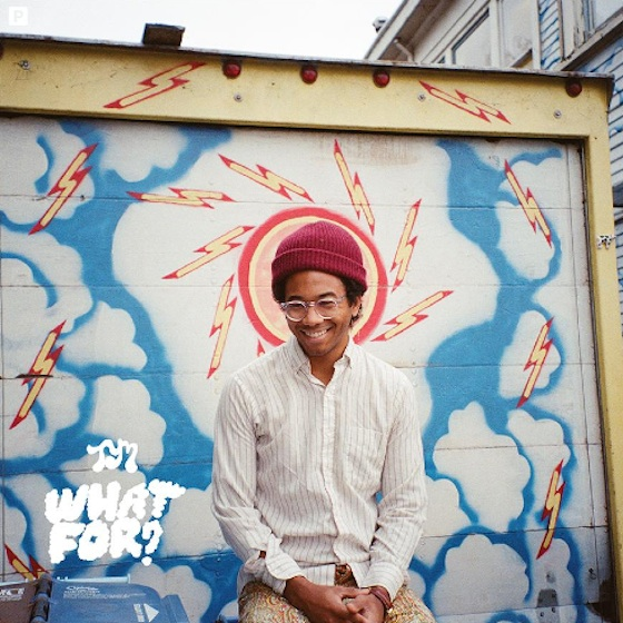 Toro y Moi Details 'What For?' LP