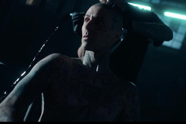 "Travis Barker and Lil Wayne Share Ass-Heavy Video for ""Gimme Brain"""