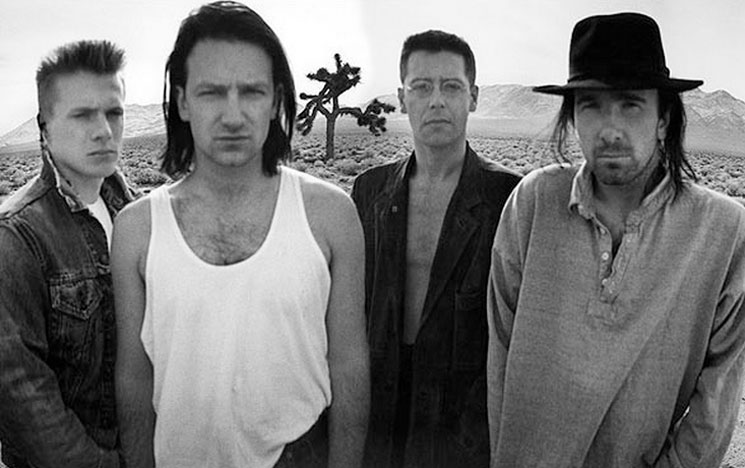 U2's Joshua Tree Vandalized