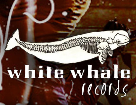 White Whale Records Open Up Pay-What-You-Want Webshop