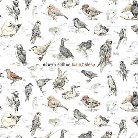 Edwyn Collins Sets North American Release Date for <i>Losing Sleep</i>