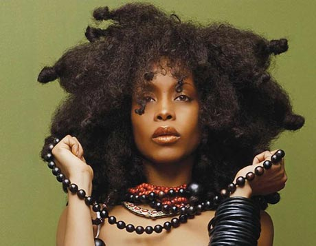 Erykah Badu New Amerykah Part One (Fourth World War)