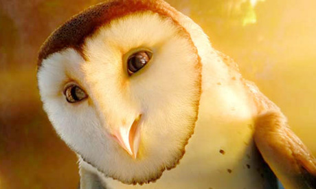 Legend of the Guardians: The Owls of Ga'Hoole Zack Snyder