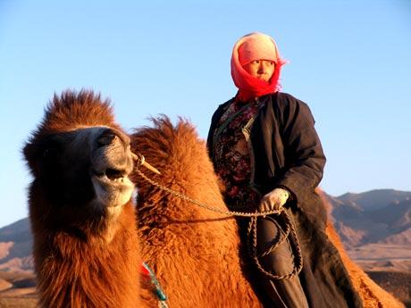 Tuya's Marriage Quanan Wang