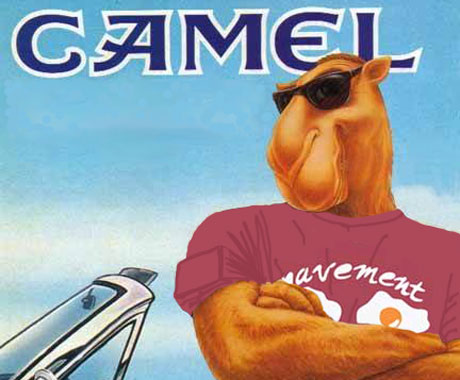 Judge Rules Against Camel in Indie Rock Ad Case