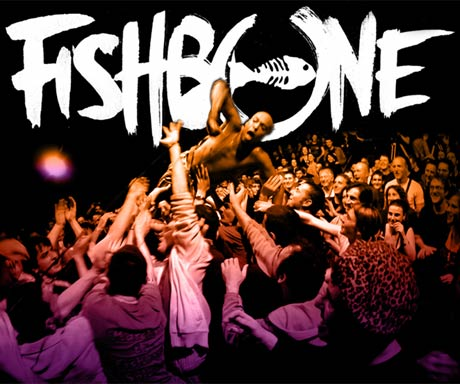 "Concertgoer Sues Fishbone After Getting Injured by Singer's ""Unannounced"" Stage-Diving Antics"