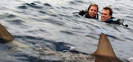 Open Water Chris Kentis