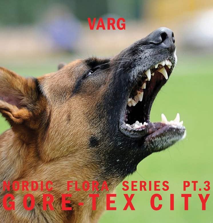 Varg Nordic Flora Series Pt. 3: Gore-Tex City
