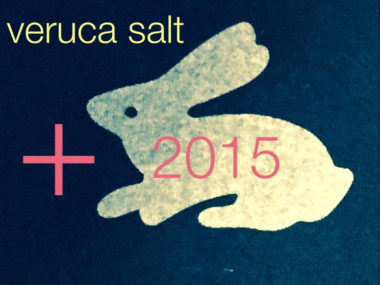 Veruca Salt Book North American Summer Tour