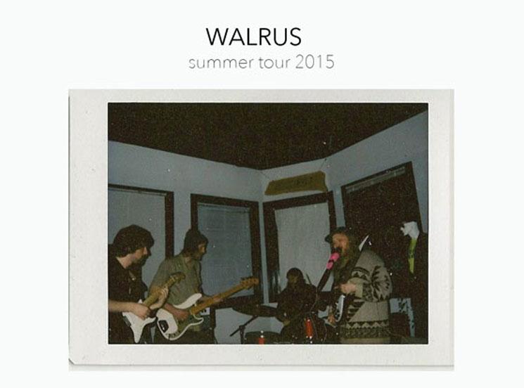 Walrus Plot Canadian Summer Tour
