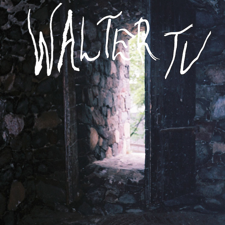 Walter TV Get 'Blessed' on New LP