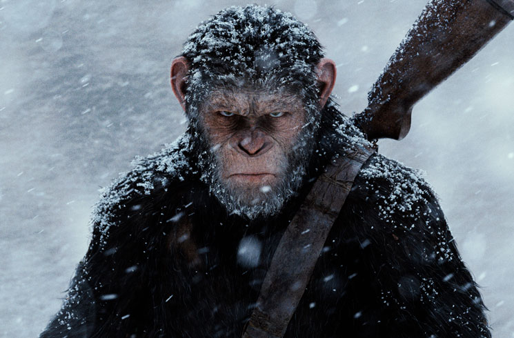 An Essential Guide to the 'Planet of the Apes' Films