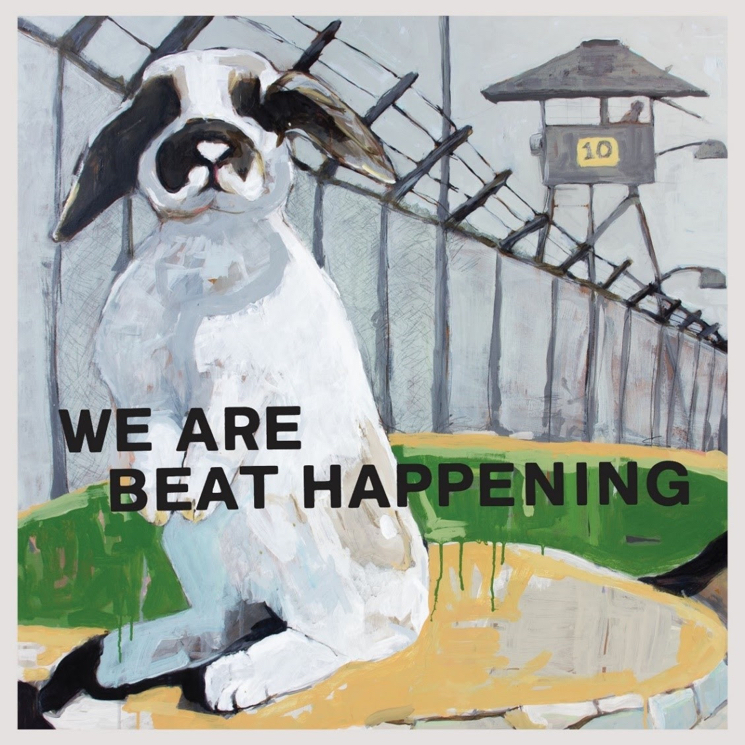Beat Happening Unveil Career-Spanning Vinyl Box Set