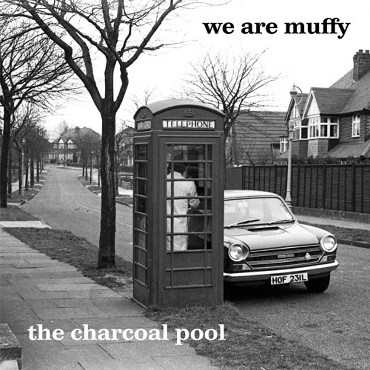 We Are Muffy The Charcoal Pool