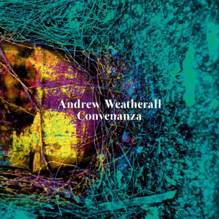 Andrew Weatherall Returns with New Solo Album