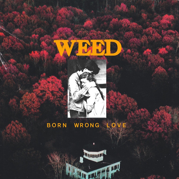 Weed Return with Third and Final Album