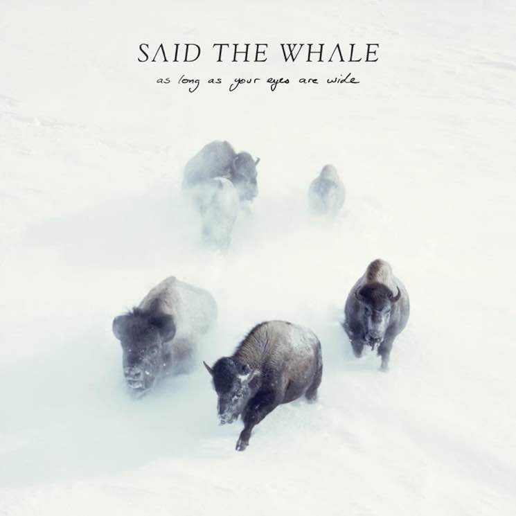 Said the Whale As Long as Your Eyes Are Wide