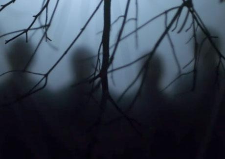 """Wild Beasts """"Albatross"""" (video)"""