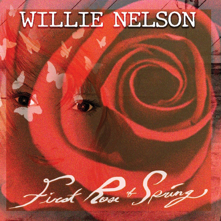 Willie Nelson Announces New Album 'First Rose of Spring'