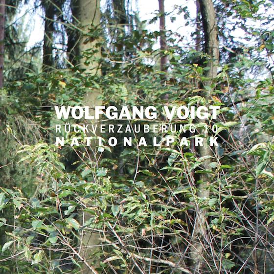 Wolfgang Voigt Returns with Next Installation of 'Rückverzauberung' Series