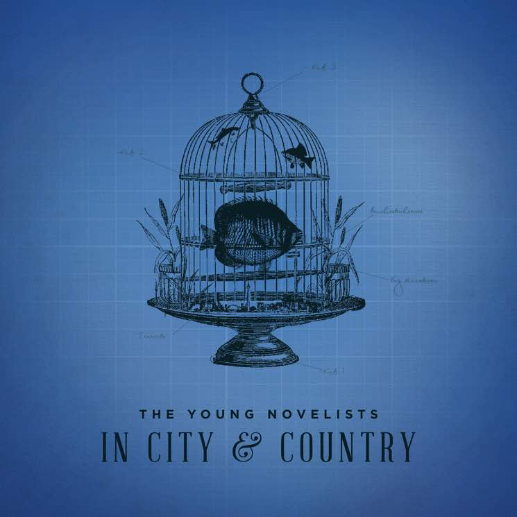 ​The Young Novelists Announce 'In City & Country' LP, Premiere New Video