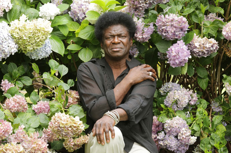 Soul star Charles Bradley dies aged 68 after battle with cancer