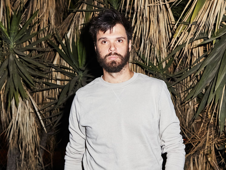 ​Dirty Projectors Modular Mourn