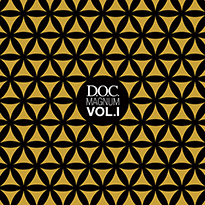 Various / Gui Boratto