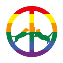 Hype Williams Unveil 'Rainbow Edition' LP