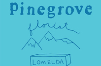 Pinegrove Plot North American Tour