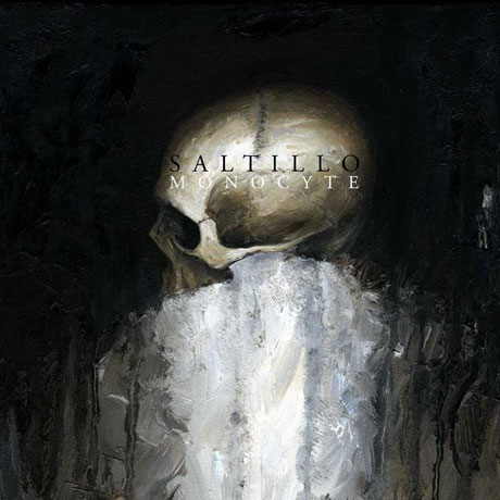 Saltillo-Monocyte-.jpg