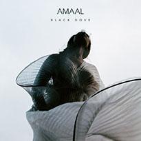 Amaal Black Dove